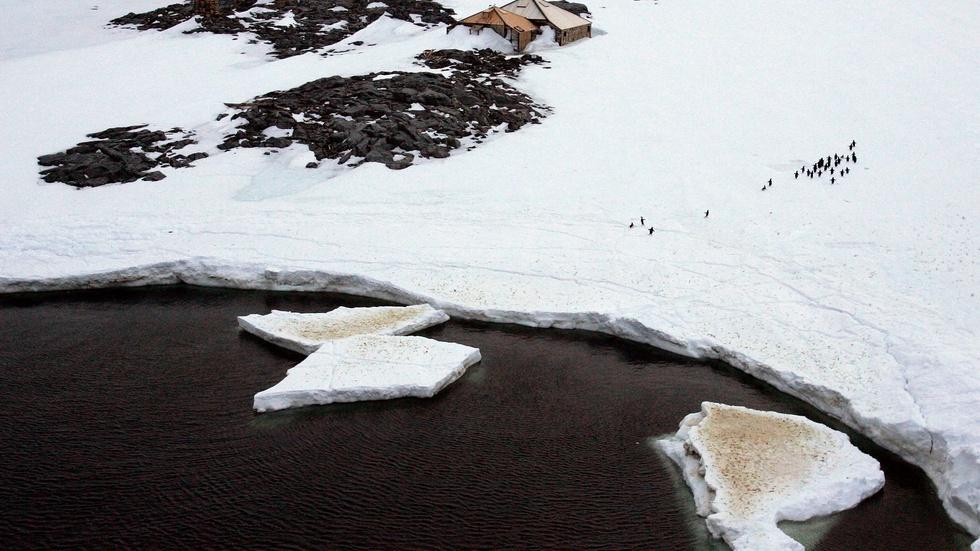 Antarctic ozone hole believed to be shrinking image