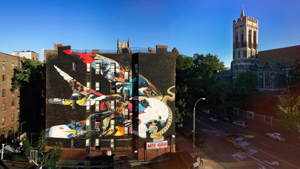 These vivid NYC murals spotlight climate-threatened birds image