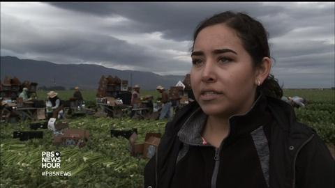 PBS NewsHour -- California's 'Salad Bowl' is cultivating more than crops