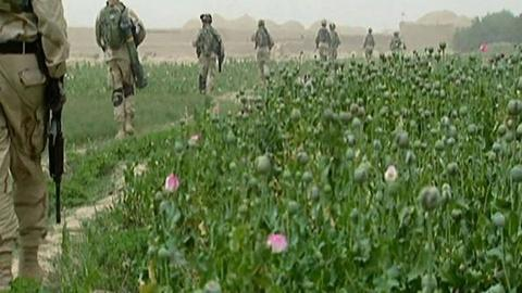 PBS NewsHour -- 'Raw Opium' Explores Mixed Results of Global Efforts to...