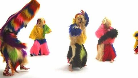 PBS NewsHour -- Nick Cave Brings Art, Sculpture to Life With 'Soundsuits'