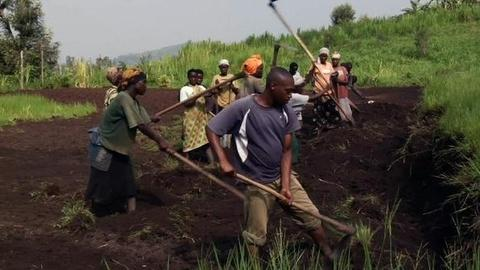 PBS NewsHour -- Business Fund Puts African Farmers on Road to Market