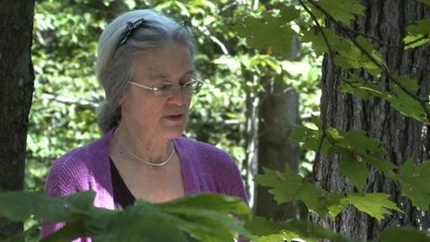 PBS NewsHour -- Weekly Poem: Sharon Olds Reads 'Diagnosis'