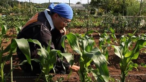 PBS NewsHour -- As Farmers Age, Japan Rethinks Relationship With Food, Field