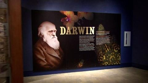 PBS NewsHour -- Was Charles Darwin the Father of Economics as Well?