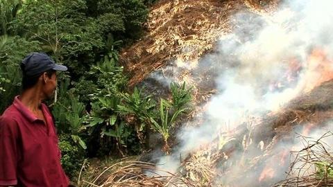 PBS NewsHour -- 'Up in Smoke' Film Examines Perils of Slash and Burn...