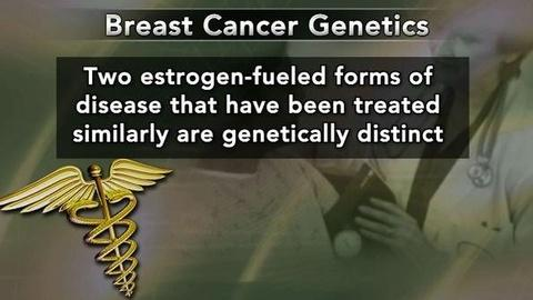 PBS NewsHour -- Genetic Analysis of Breast Cancer Could Change Treatment