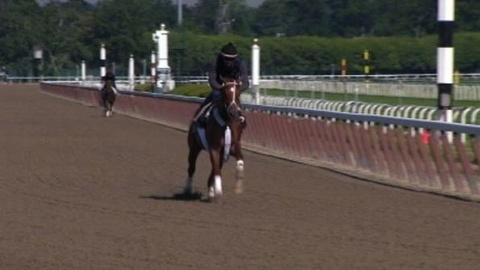 PBS NewsHour -- Hopes for a Triple Crown Once Again a Scratch