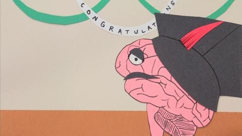 NOVA scienceNOW -- Hippocampus Humor