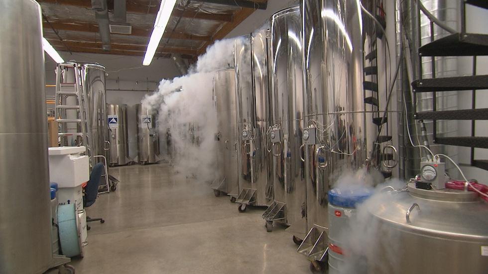 Cryonics image