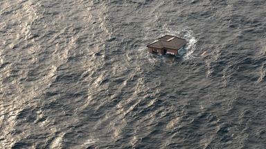Surviving the Tsunami Preview