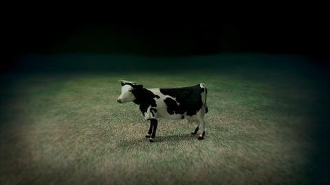 NOVA -- S41 Ep2: Flying Cow Intestines