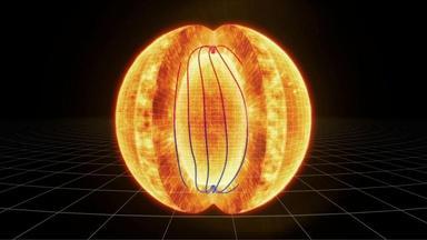 The Dynamic Sun