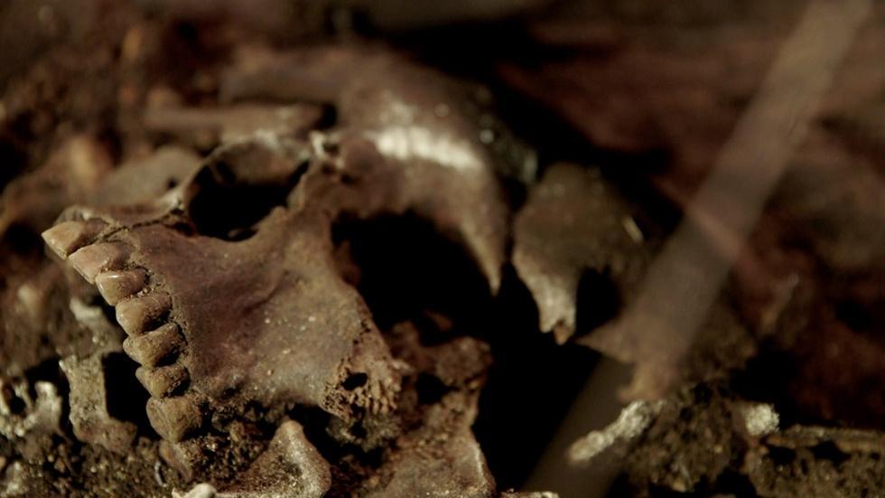 Autopsying a Roman Catacomb image