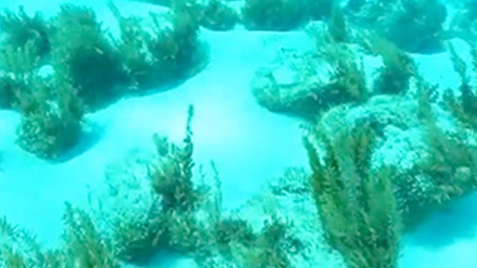 Exuma Cays 2 image