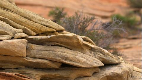 Fossilized Sand Dunes