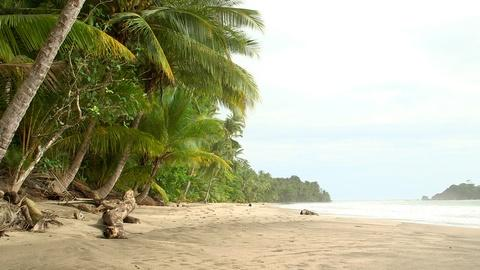 NOVA -- S42 Ep21: How Panama Changed the World