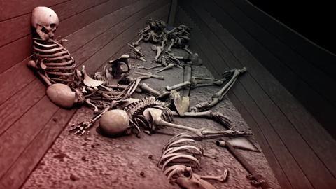 NOVA -- Viking Unearthed Sneak Peek