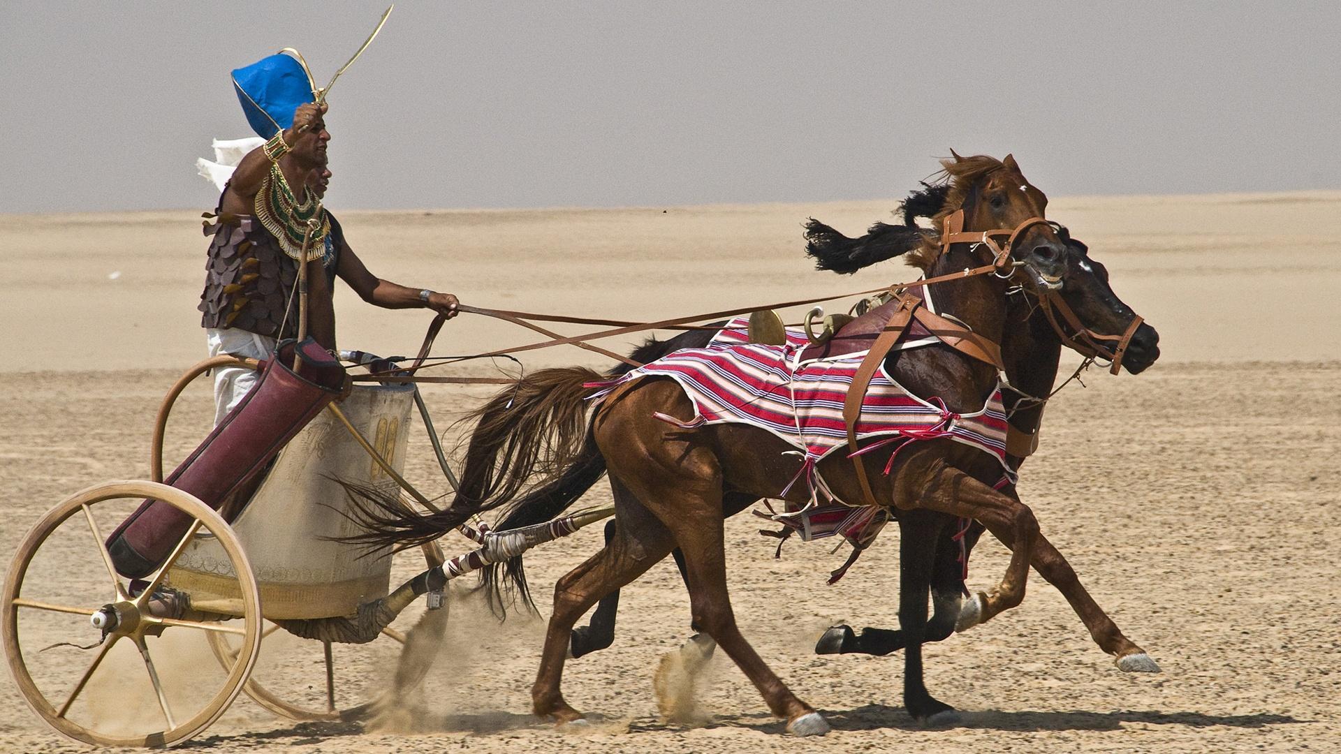 building pharaoh s chariot nova pbs