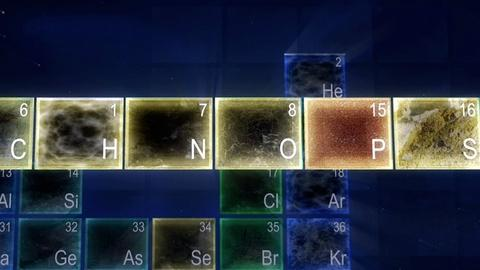 NOVA -- CHNOPS: Ingredients for Life