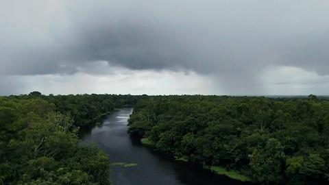 NOVA -- Fertilizing the Amazon