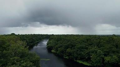 Fertilizing the Amazon