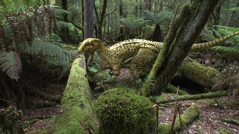 NOVA -- Australia's First 4 Billion Years: Monsters