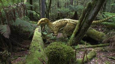 Australia's First 4 Billion Years: Monsters