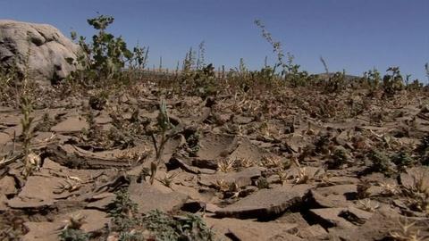 NOVA -- The Climate Wild Card