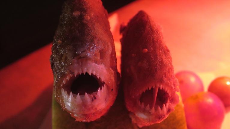 Original Fare: Hunting Piranha on the Amazon