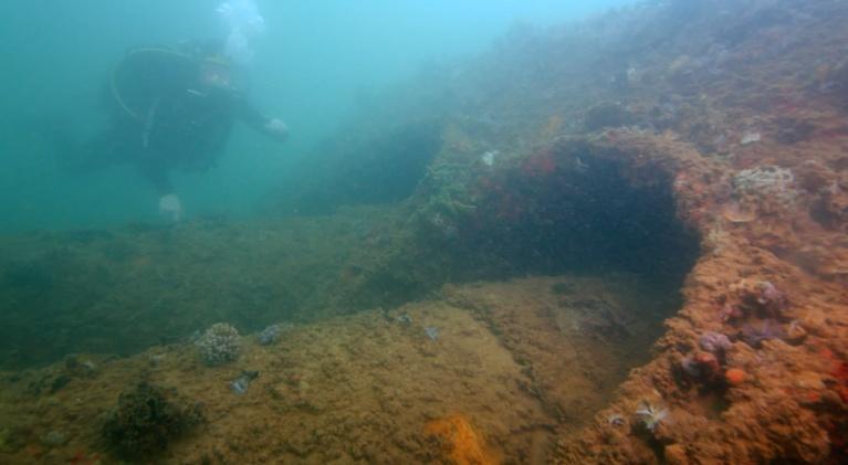 Pearl Harbor - Into the Arizona: Sunken Relics Revealed