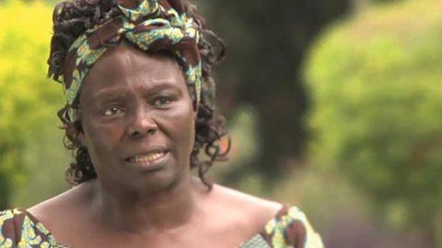 Good Fortune: Wangari Maathai, Kenyan Environmentalist