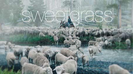 Trailer   Sweetgrass