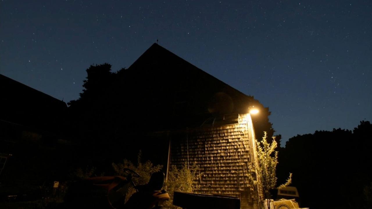 The City Dark: Addressing Light Pollution