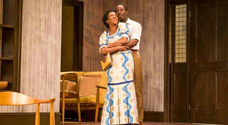 A Raisin in the Sun Revisited: The Raisin Cycle at Center Stage: A Raisin in the Sun Revisited - Preview