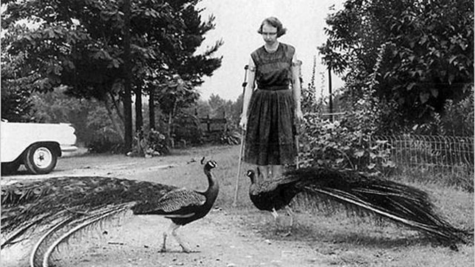 Flannery O'Connor image