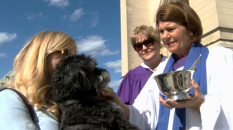 Religion & Ethics NewsWeekly: Blessing of the Animals