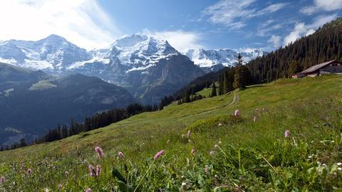 Rick Steves' Europe -- Switzerland's Jungfrau Region: Best of the Alps