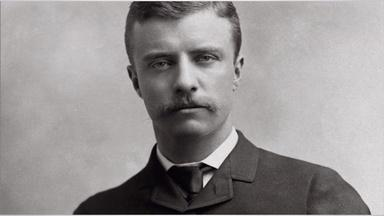 Timeline Clip - Theodore Roosevelts Political Career Starts