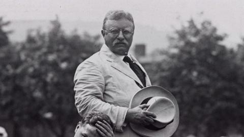 The Roosevelts -- Education Clip: Theodore Roosevelt and WWI