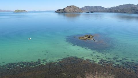 Saving the Ocean -- Destination Baja