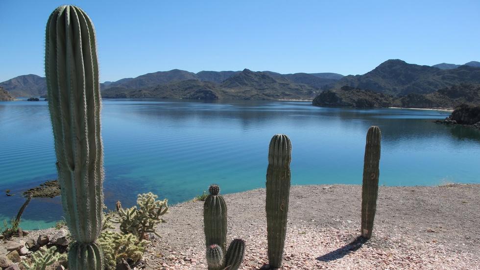 Destination Baja - Preview image