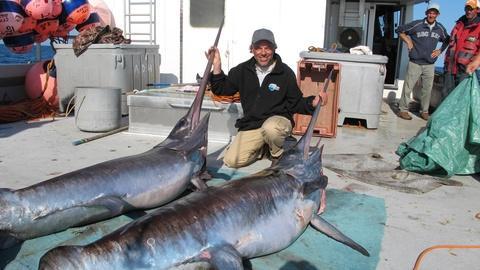 Saving the Ocean -- Swordfish! - Preview