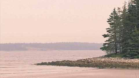 Saving the Ocean -- Scenic Nova Scotia