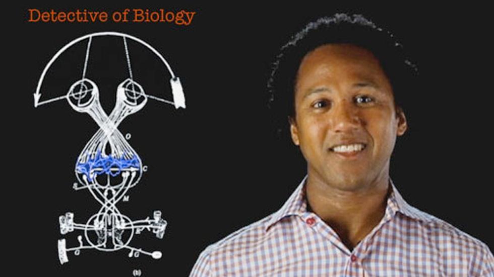 Andre Fenton: Detective of Biology image