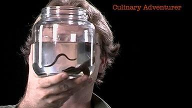 Mark Siddall: Culinary Adventurer
