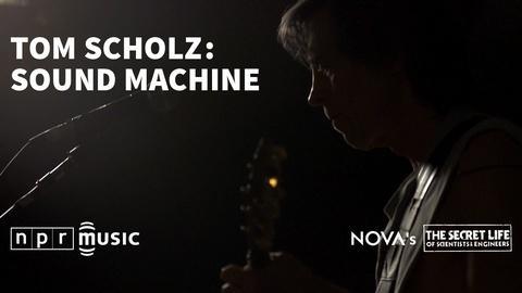 Tom Scholz: Sound Machine