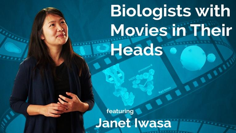 Secret Life of Scientists and Engineers: Janet Iwasa: Biologists with Movies in Their Heads