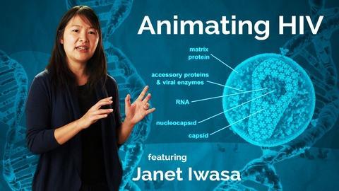 Janet Iwasa: Animating HIV
