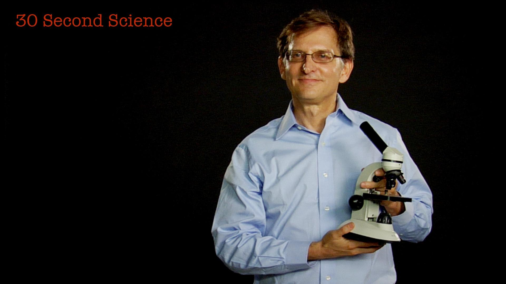 Secret Life of Scientists and Engineers: 30 Second Science: Ian Lipkin